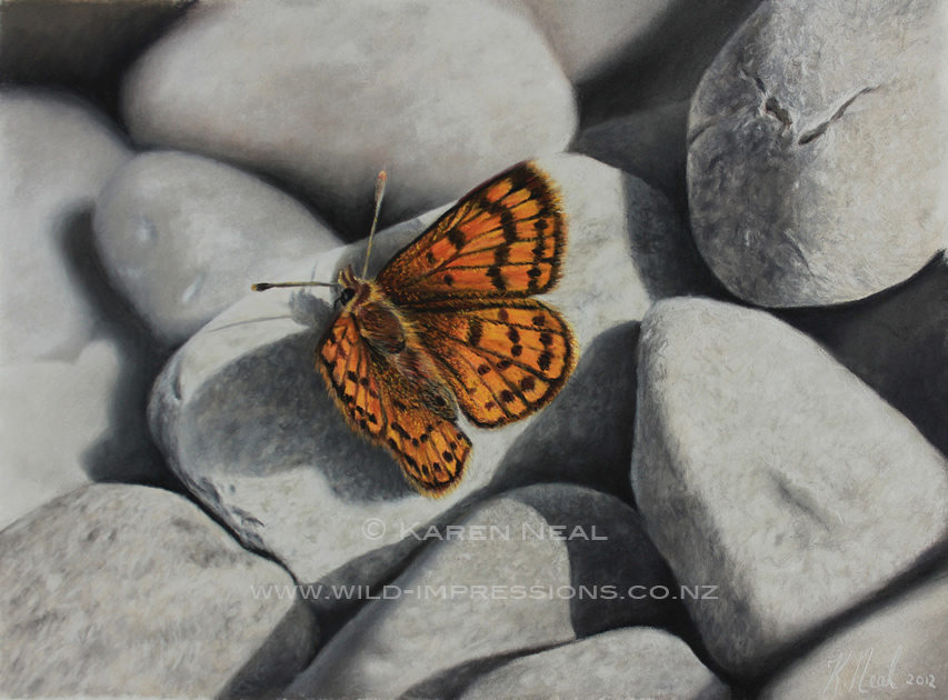 flutterby rock paintiing