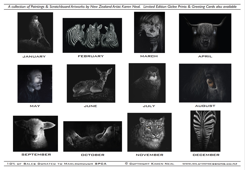 New Zealand wildlife scratchboard artist calendar