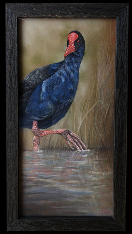 Pukeko pastel painting by New Zealand wildlife artist Karen Neal