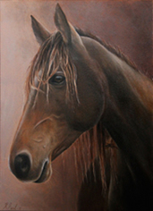 Donation oil painting of a Kaimanawa horse to raise funds for HUHANZ Animal Sanctuary