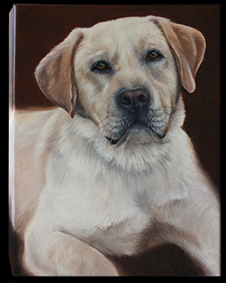 Commissioned oil painting of Zeus, by New Zealand pet portrait artist Karen Neal