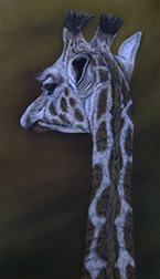 Rapaura School Art Auction artwork donated by wildlife artist Karen Neal
